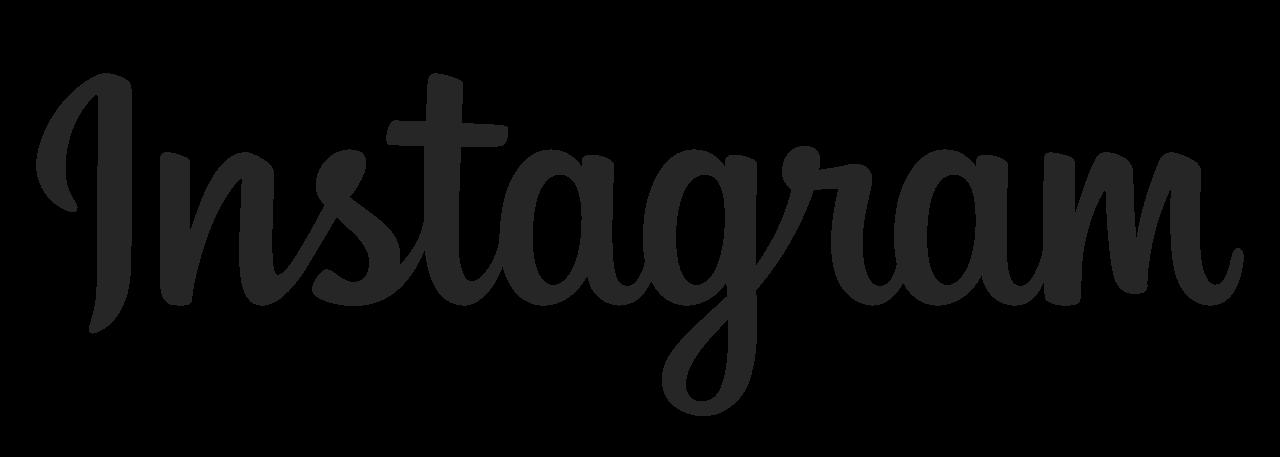 Logo de Instagram Ads, alternative à Google Ads